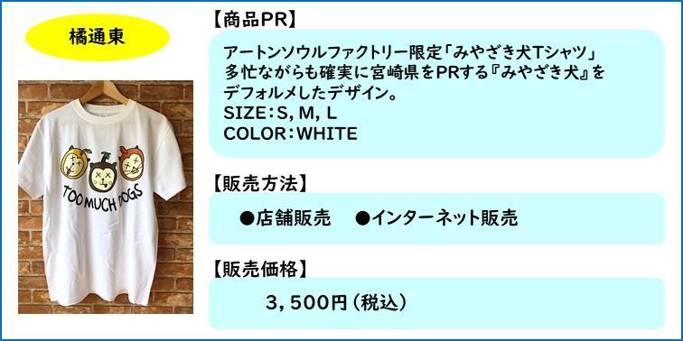 商品掲載テンプレ 【アートンソウルファクトリー】.jpg